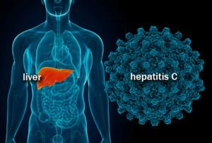 Type of Liver Hepatitis