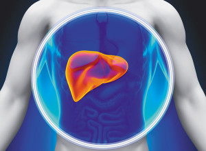 Tests to Check your Liver Function