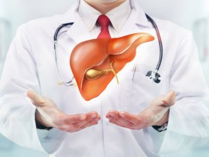 Preventive Measures for your Liver